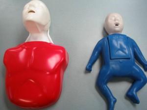 Adult and pediatric training mannequin