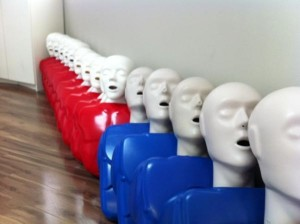 Adult training mannequins